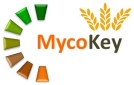 Integrated and innovative key actions for mycotoxin management in the food and feed chain